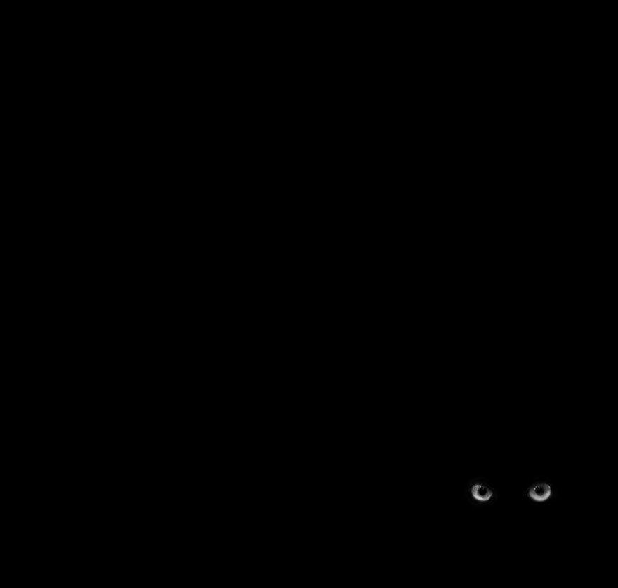 Черная ночь
