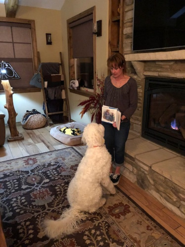 Super smart dog learns how to read commands from a card