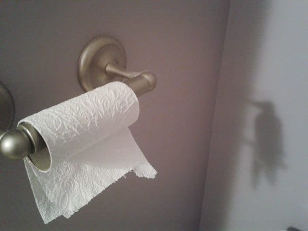 The Shadow From The Toilet Paper Roll Looks Like A Hummingbird