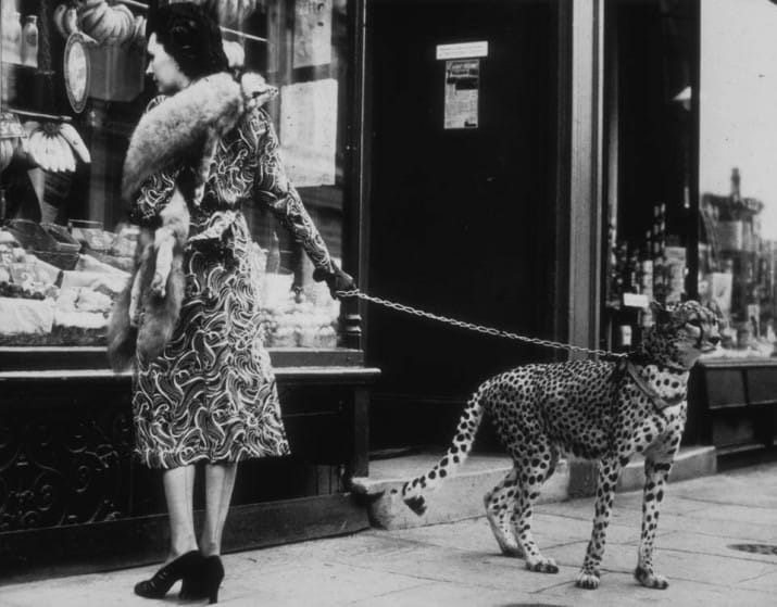 She was an American silent film actress Phyllis Gordon, who lived in London and had a cheetah cub flown over from Kenya in the 1930s. Like you do.