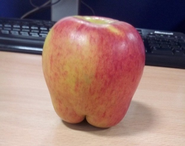 This apple with a little booty.