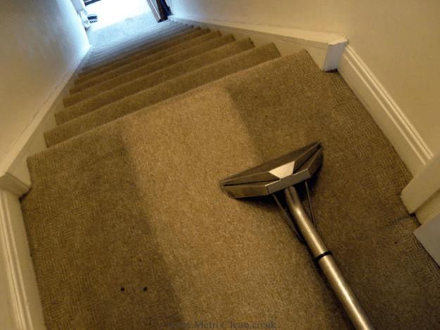 This carpet.