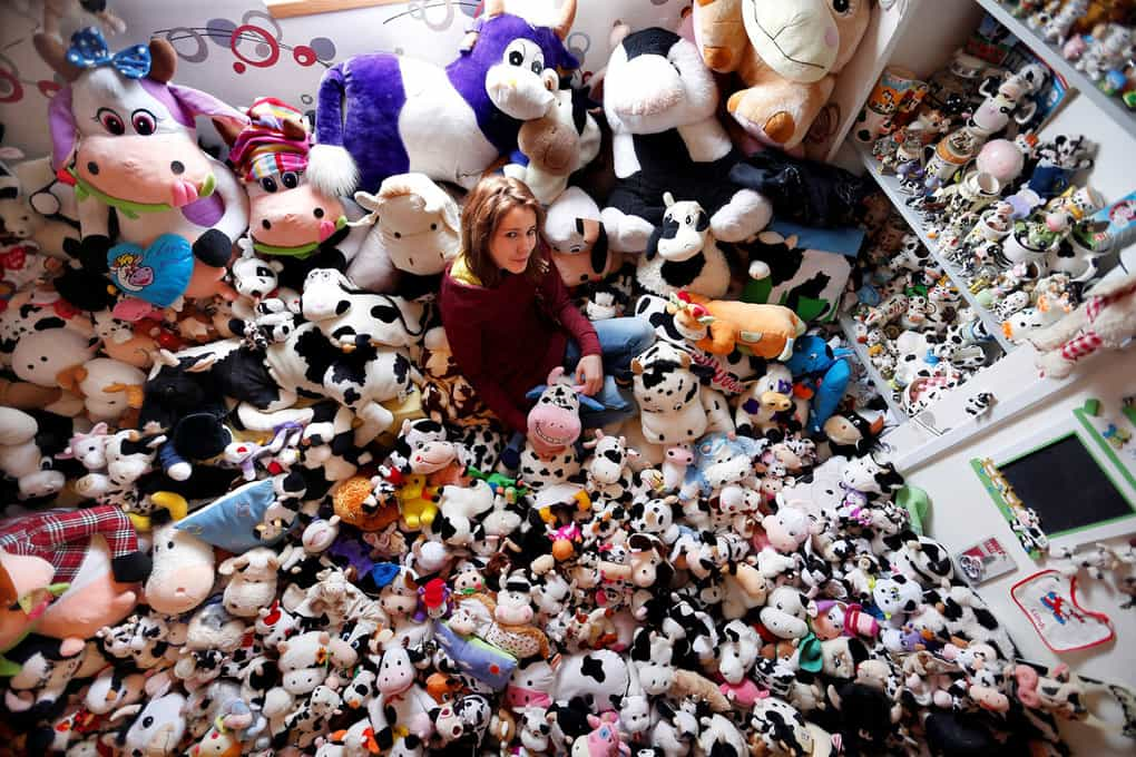 French Model Emeline Duhautoy poses with her collection of 1,679 stuffed toy cows she has been collecting for over seven years at her home in Saint-Omer, France.