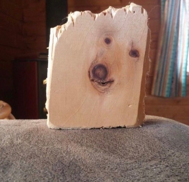 The stains on this piece of wood that look like a dog.