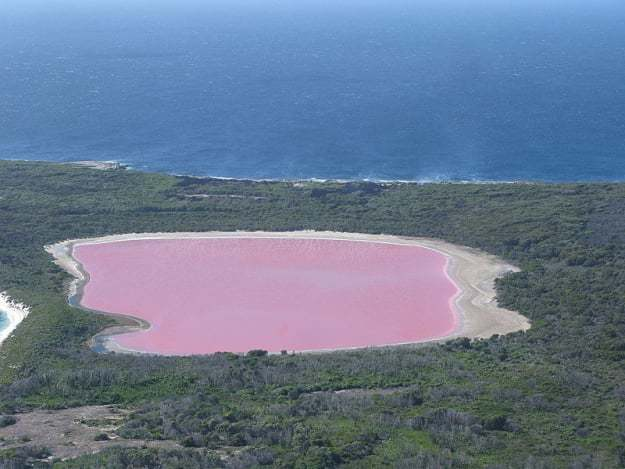 In Western Australia, Lake Hillier looks like it