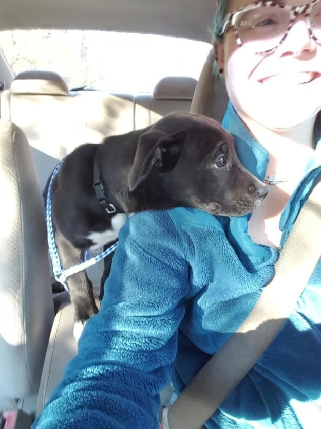 This cutie who is a tiny bit nervous about his first car ride.