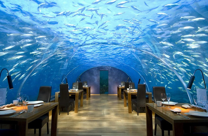 Dine Five Metres Below The Surface, Ithaa Undersea Restaurant, Alif Dhaal Atoll, Maldives