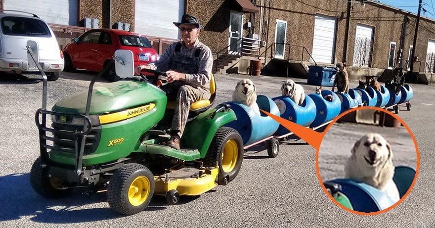 80-летний пенсионер построил поезд, чтобы катать спасенных бездомных собак