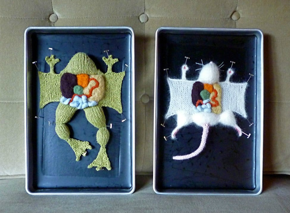 Вязаные анатомические экспонаты от Эмили Стоункинг