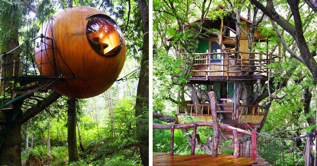10 самых удивительных отелей на деревьях из разных уголков мира