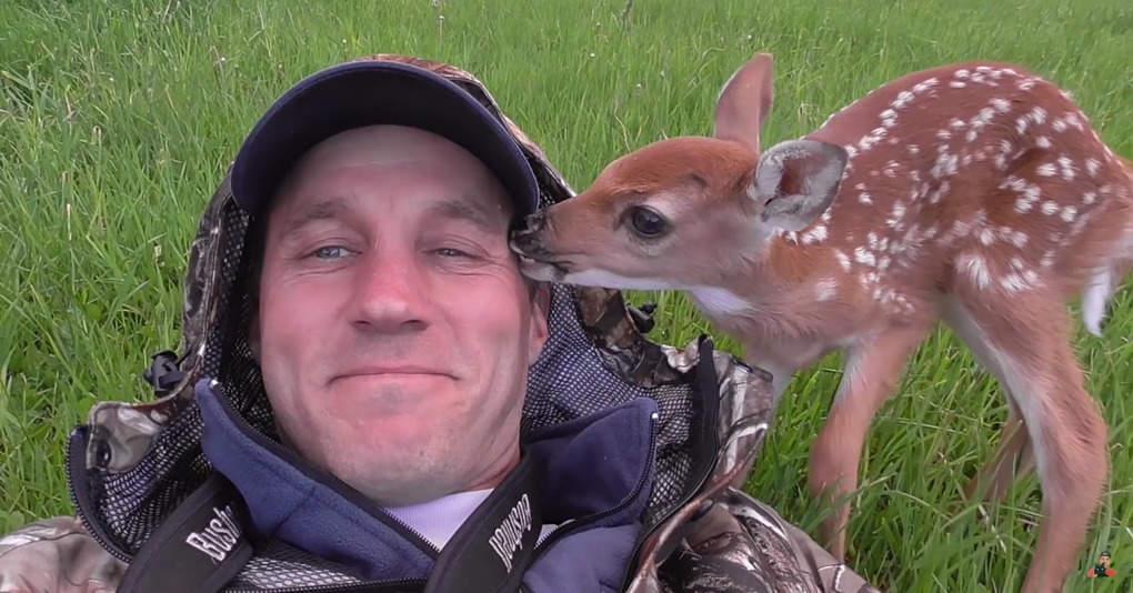 Мужчина выходил брошенного олененка, но тот низачто не хотел его покидать