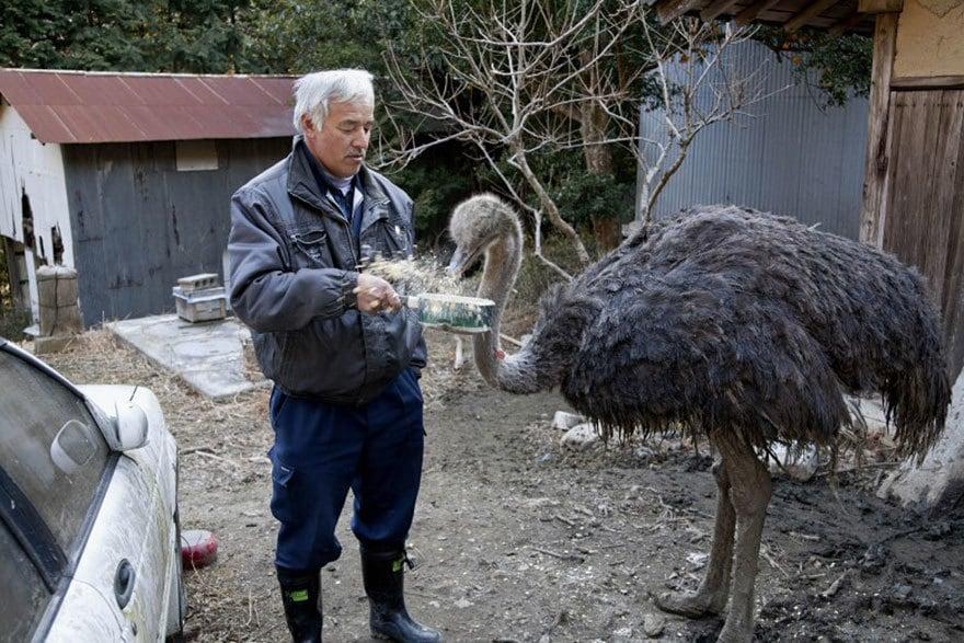 fukushima-radioactive-disaster-abandoned-animal-guardian-naoto-matsumura-11
