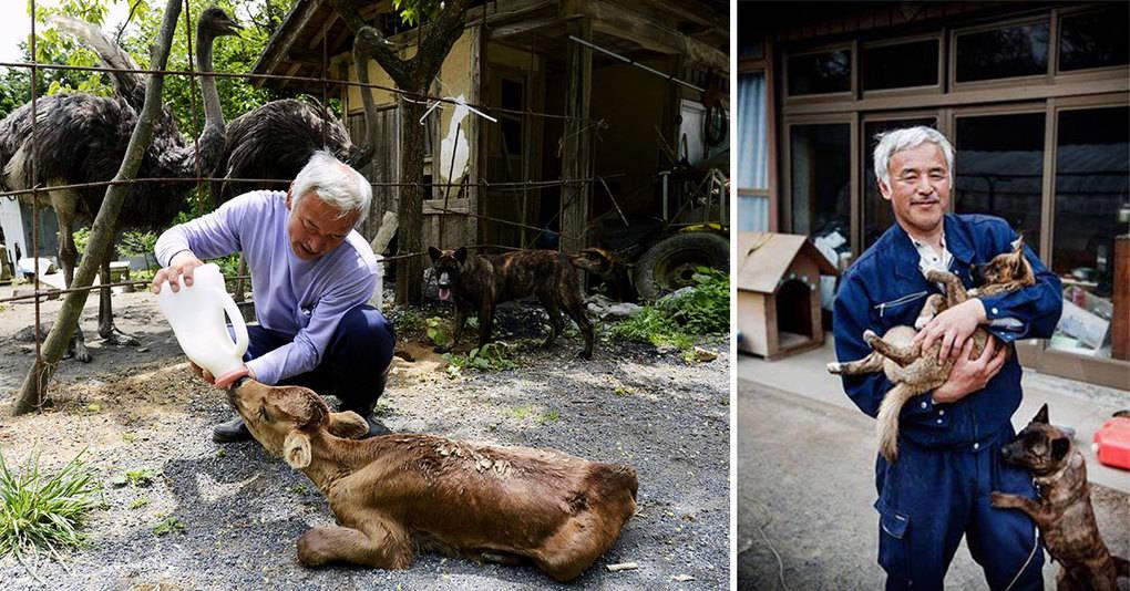 Один японец вернулся в зараженную зону Фукусимы, чтобы кормить брошенных там животных