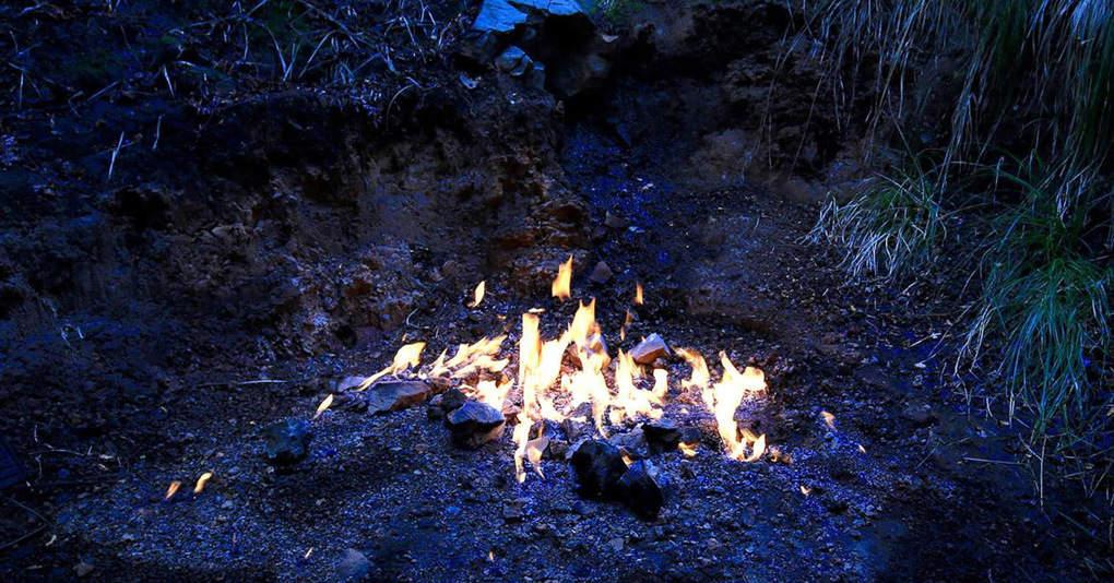 Негаснущий чудо-огонь в лесах Новой Зеландии