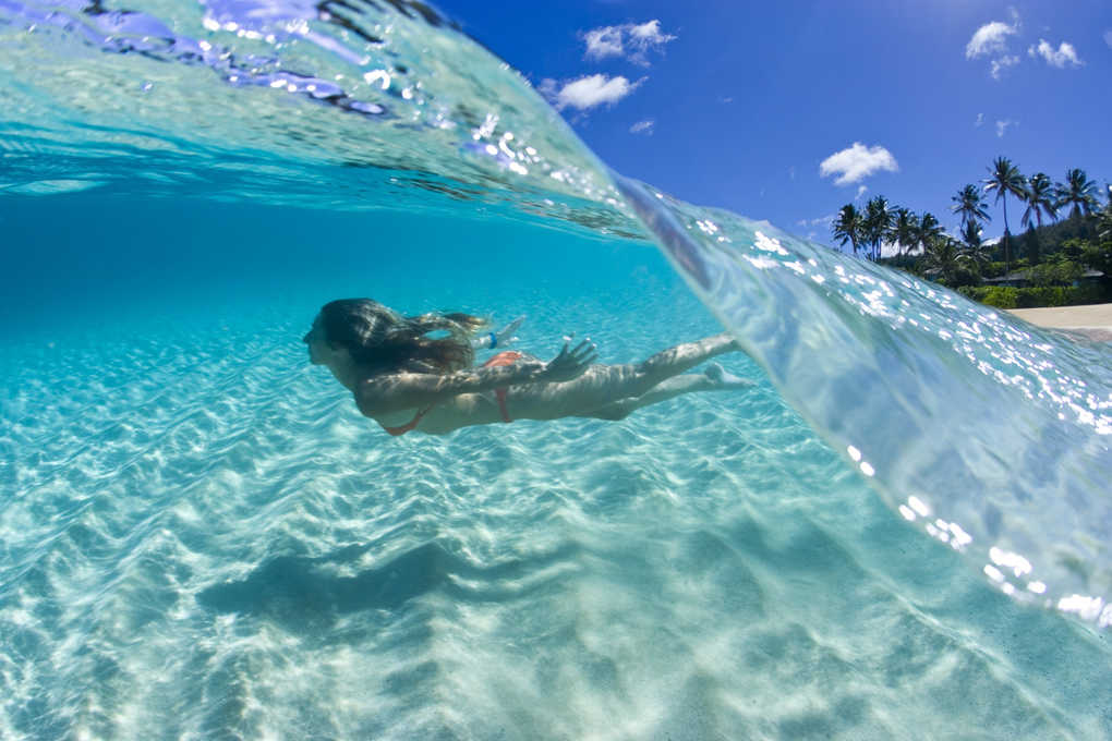 A split level image of Lane Davey swimming under water with palm trees int he background.