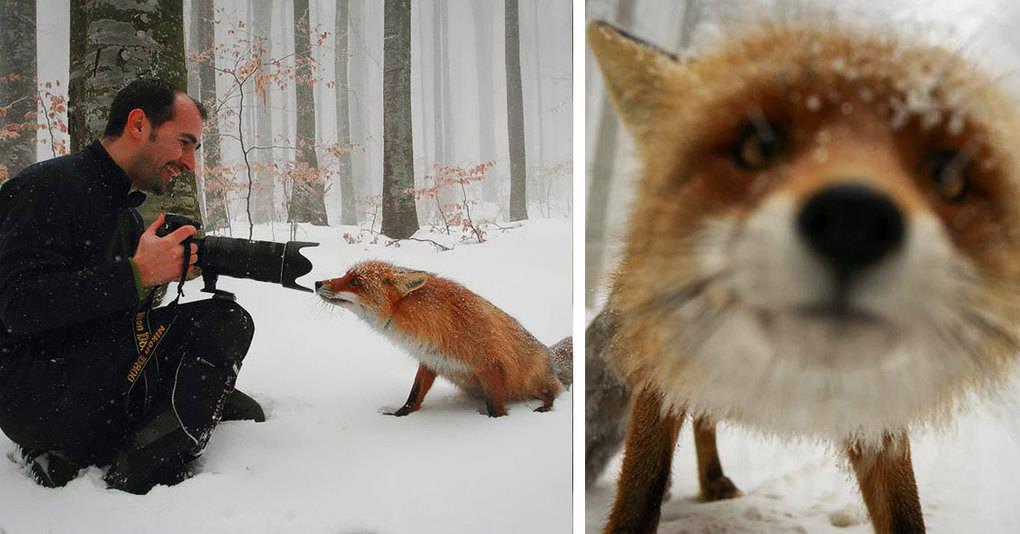20 причин, почему фотограф-натуралист — лучшая профессия на свете