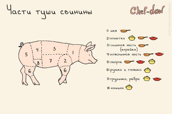Способы приготовления разных частей тушки свинины.