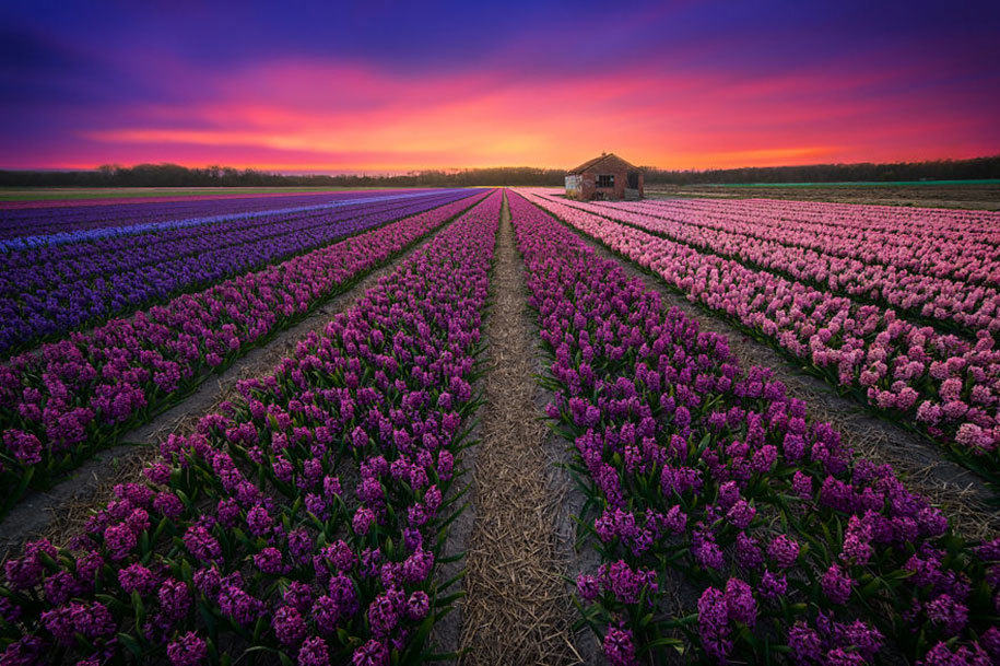 -amazing-netherland-photgraphy-albert-dros-14