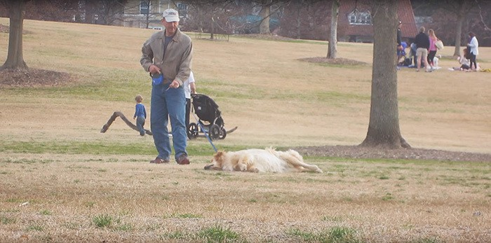 dog-plays-dead-piedmont-park-4