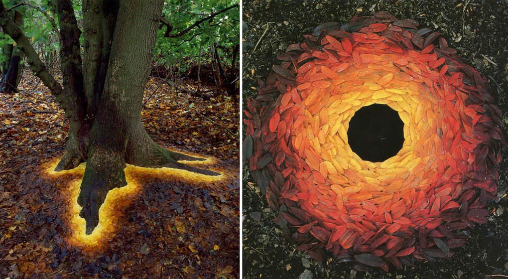 Парень делает потрясающие композиции из материалов, предоставленных самой природой
