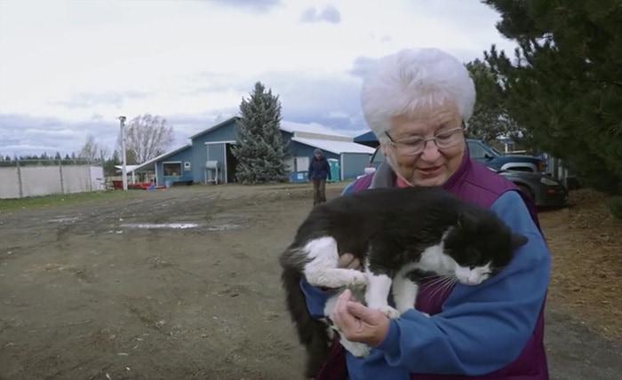 shelter-cats-work-job-farm-livin-5
