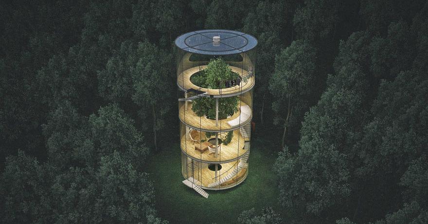 Удивительный дом, построенный вокруг дерева