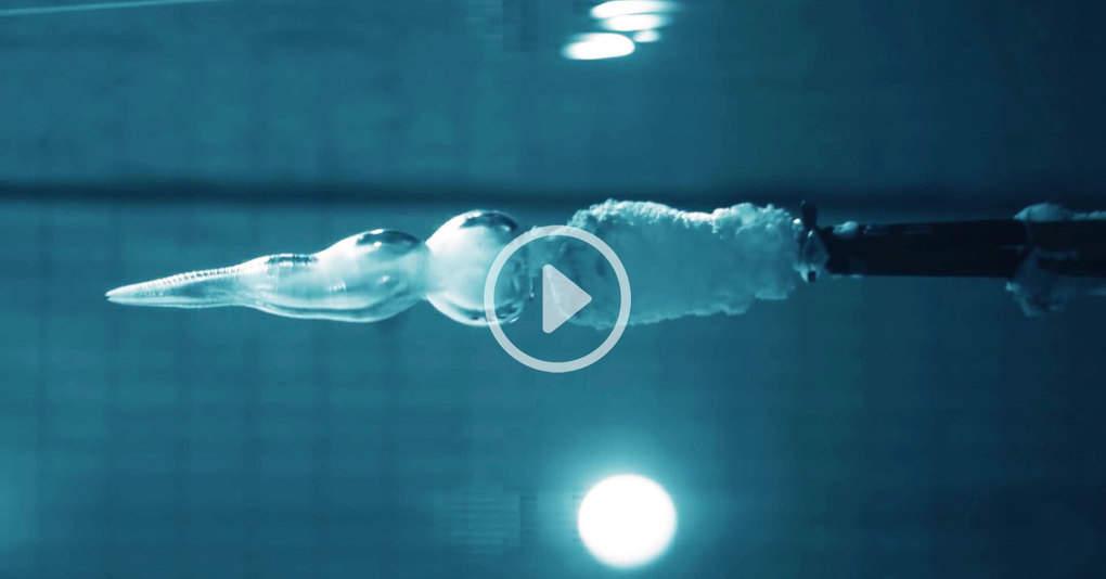 Физик выстрелил в себя под водой, чтобы показать, может ли убить пуля