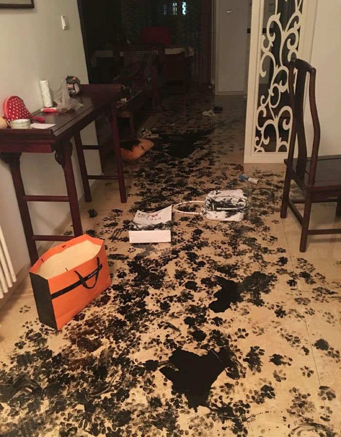 dog-makes-mess-ink-3
