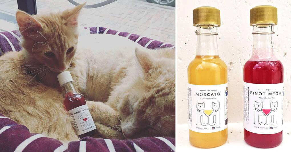 Теперь можно чокаться и выпивать вместе со своим котом