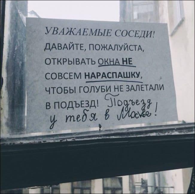 nadpisi-i-obyavleniya-28092015-022