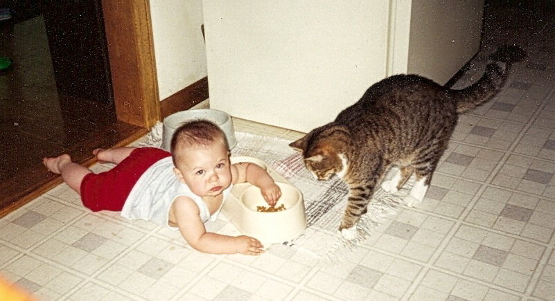 yes_i_do_eat_cat_food_by_errgerger