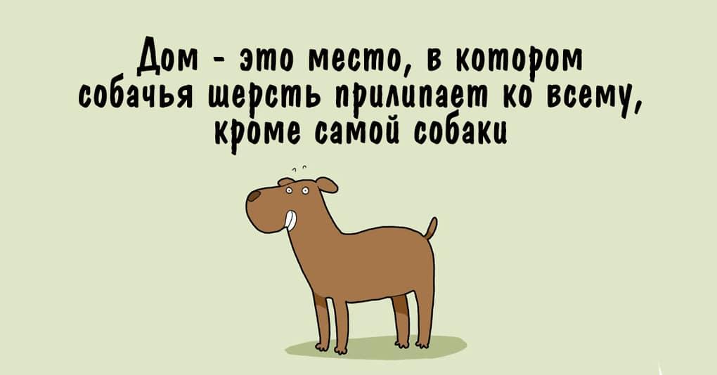 10 иллюстраций, которые будут понятны каждому, у кого есть собака