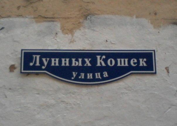 1424773568_odna-iz-prekrasneyshih-ulic-peterburga