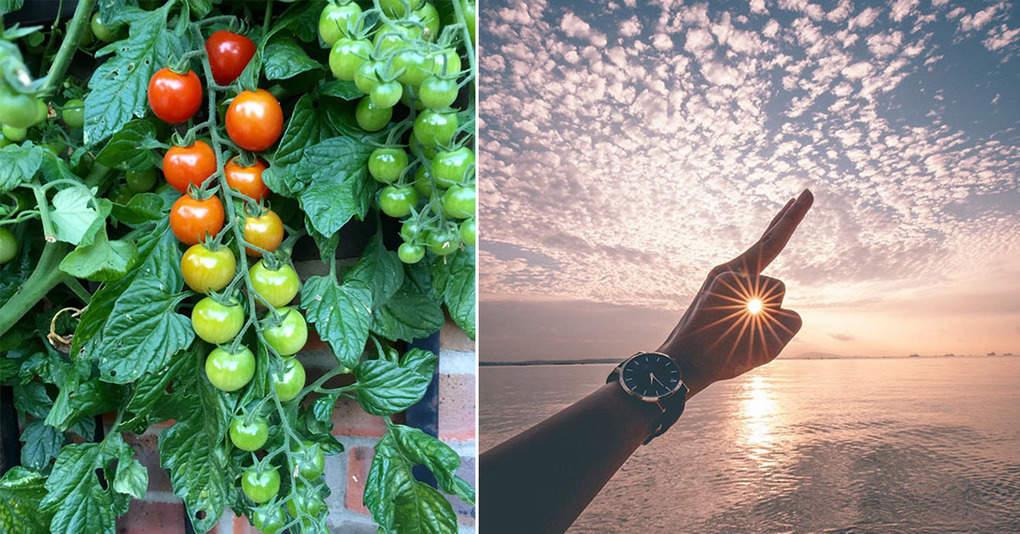 20 идеальных снимков, которые доставят вам удовольствие
