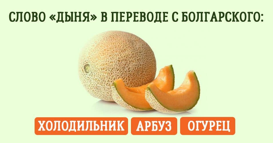 Тест: что означают эти русские слова в иностранных языках?