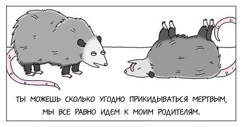 О чем говорят животные: 16 остроумных комиксов