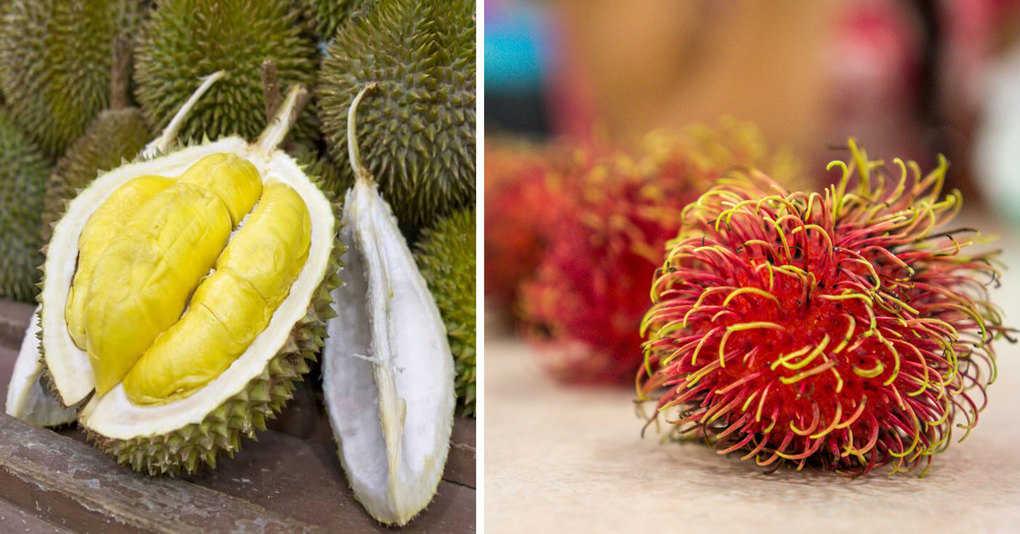 10 самых удивительных фруктов, которые вам обязательно стоит пробовать