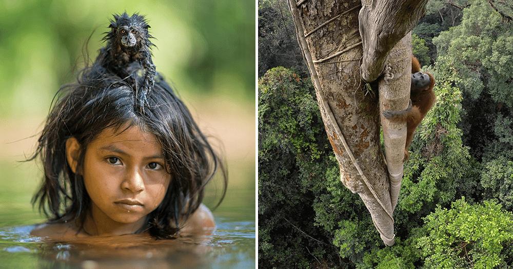 23 лучших фото 2016 года по версии National Geographic