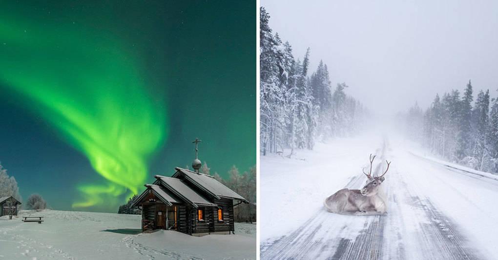 30 фотографий, доказывающих что Лапландия лучшее место для встречи нового года