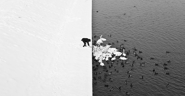 20 фотографий, которые завораживают своим минимализмом