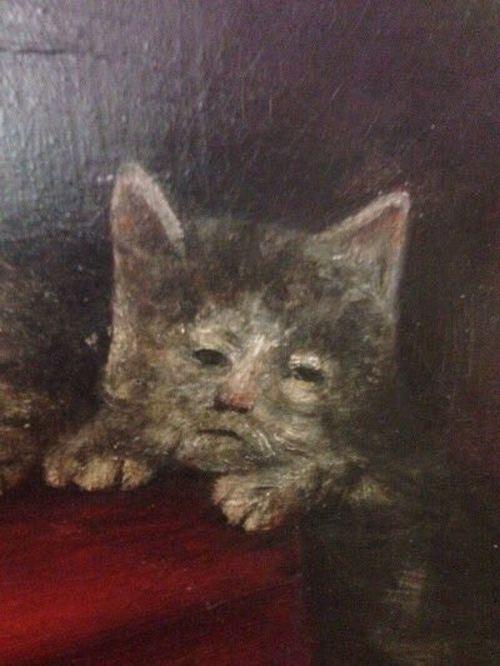 cats_mot
