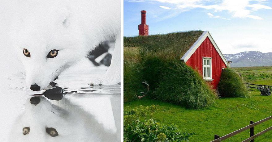15 невероятных фотографий из Исландии, которыми можно любоваться часами