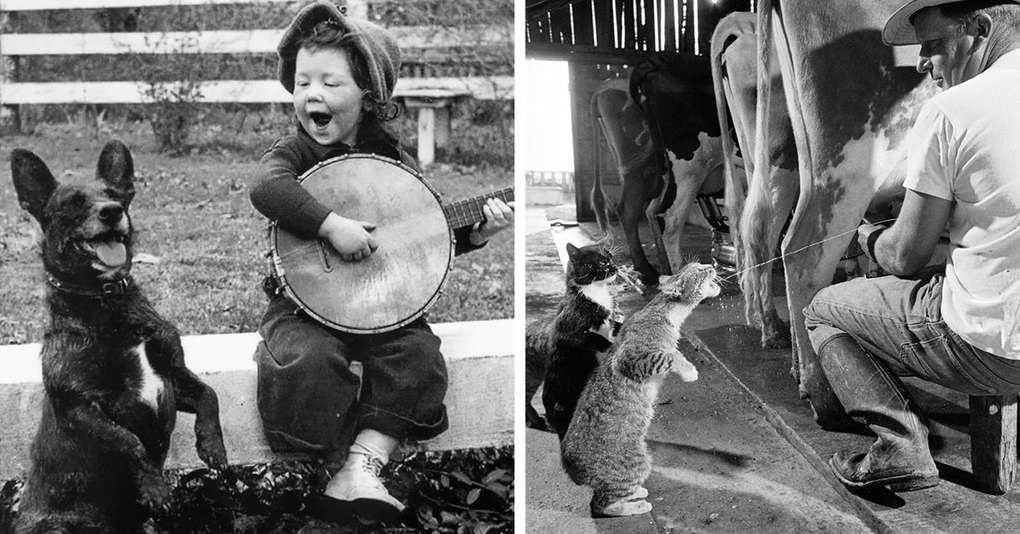 25 старых чёрно-белых фотографий, которые точно вас растрогают