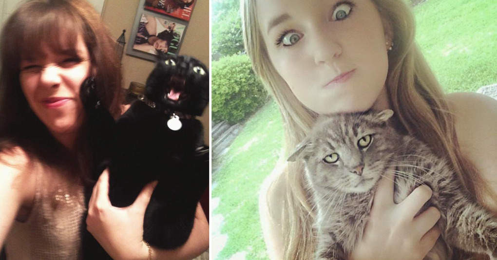 16 котов, которые меньше всего на свете любят фотографироваться