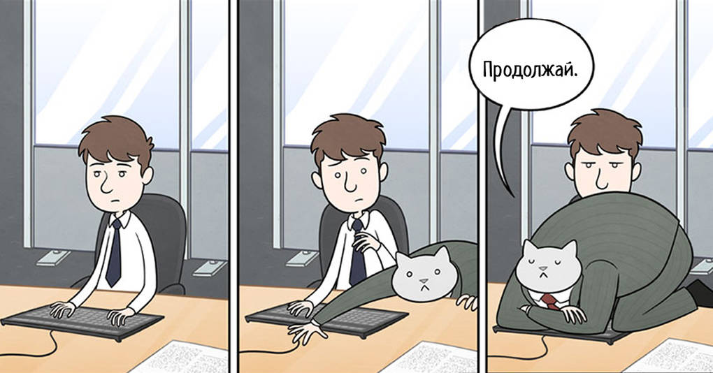 15 комиксов о том, если бы ваш босс был котом