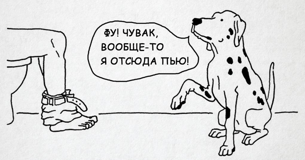 13 комиксов о том, что бы было, умей собаки говорить