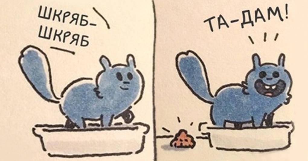15 смешных и невероятно метких комиксов о жизни с котом