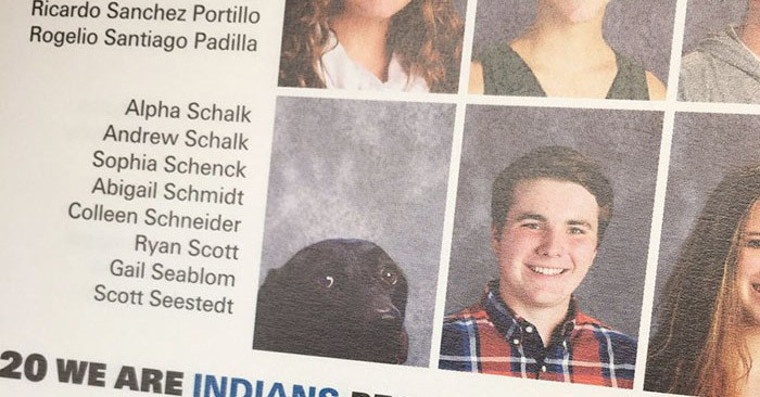 Портрет этого пса добавили в школьный альбом, и вот почему