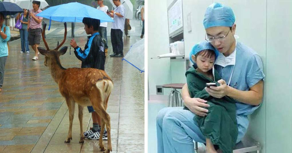20 искренних фотографий о доброте, которая спасёт мир