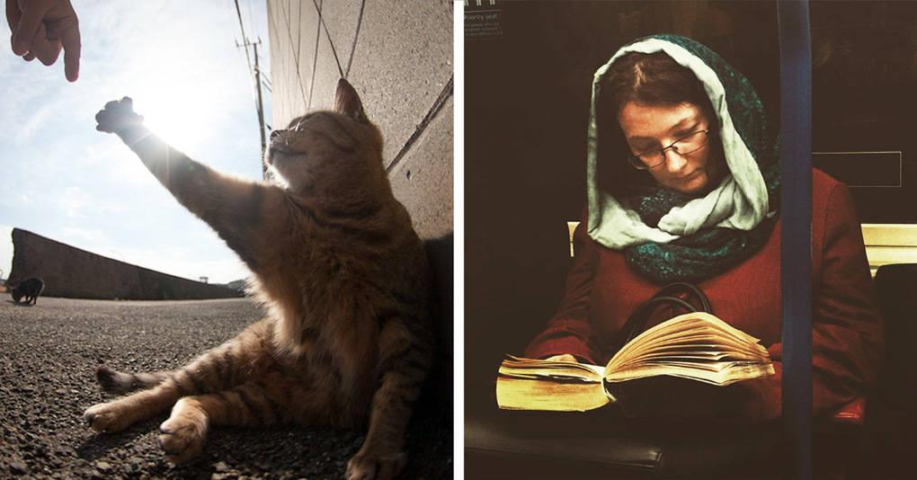18 повседневных фотографий, которые очень похожи на картины эпохи Ренессанса